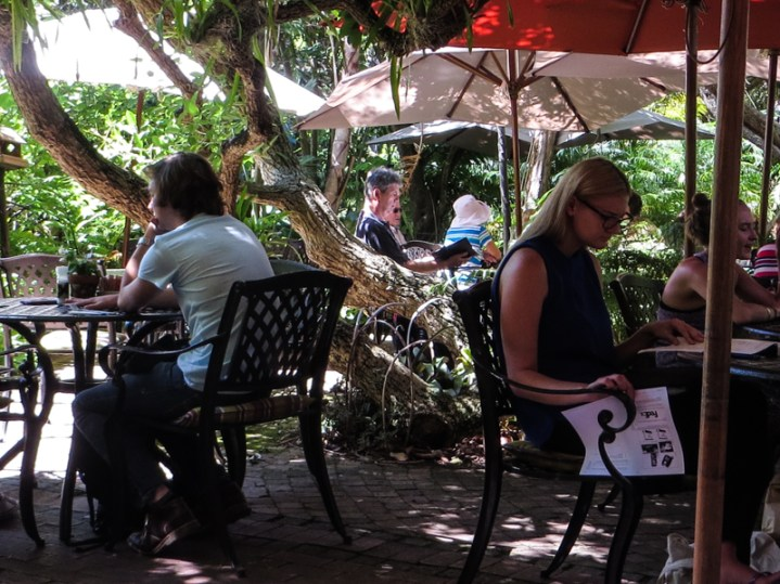 16-2-23 Stellenbosch Botanic Gardens LR-9801
