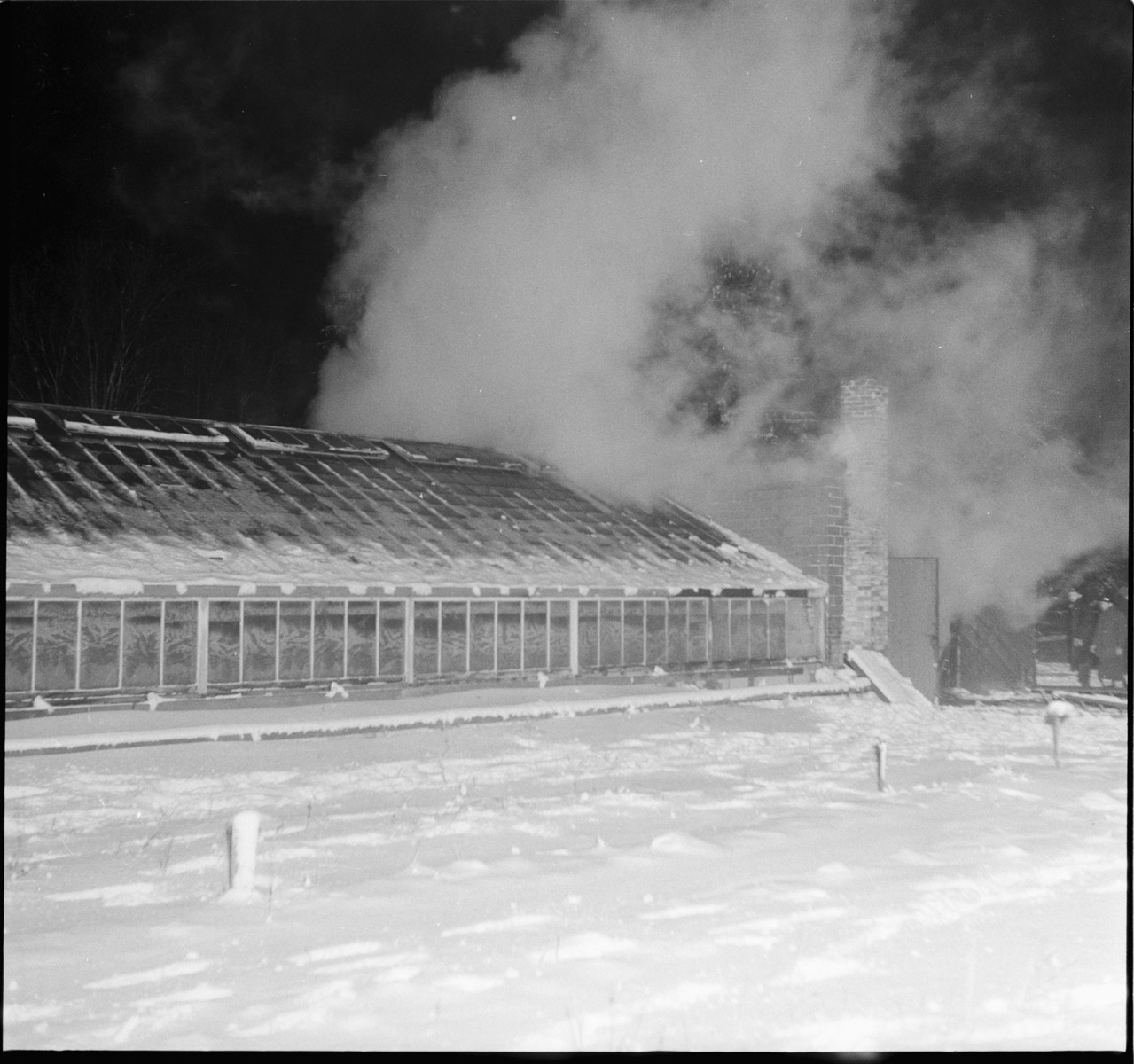 Smoke billowing out of the Byron Greenhouse