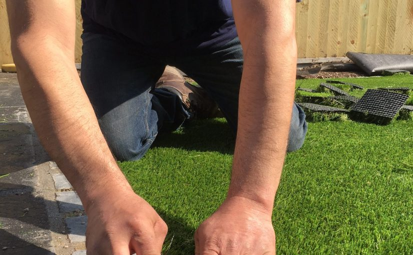 Selecting your grass