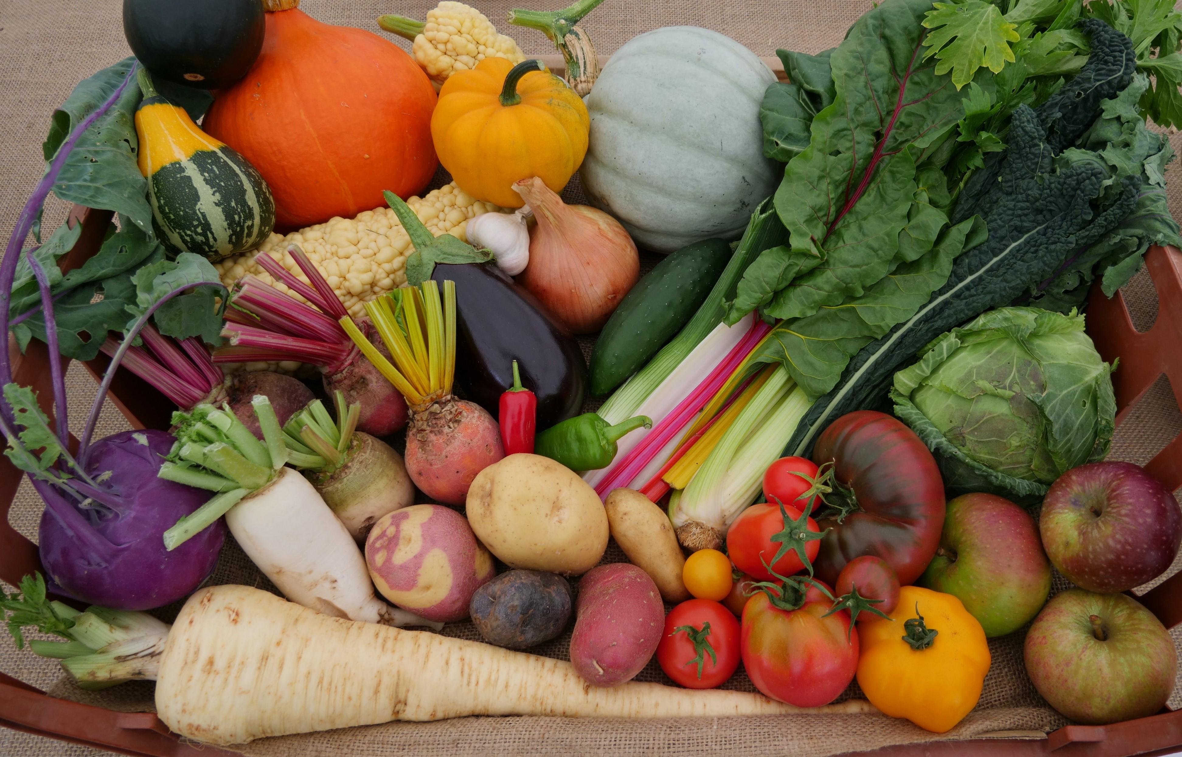 Best fruit and veg in domestic setting winner - Lamborne End