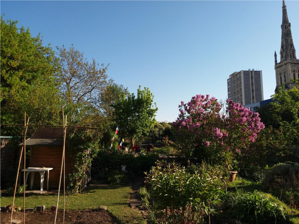 Picture of London Farm or Garden winner - Cable Street Community Garden