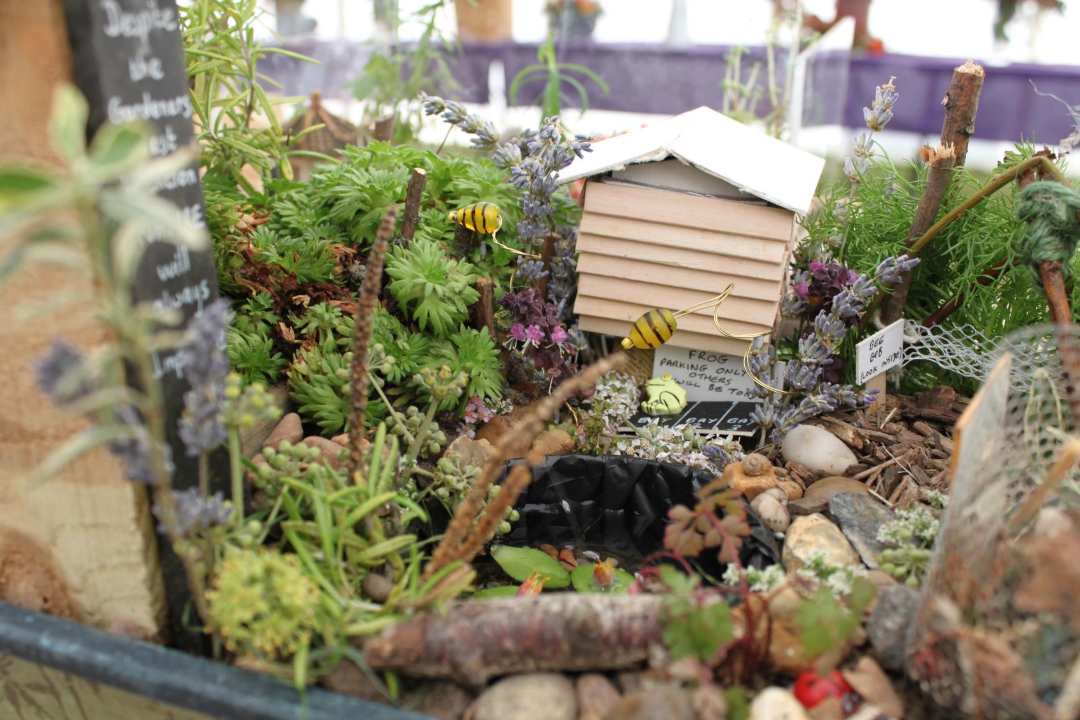Bets miniature garden in a container - Lambourne End