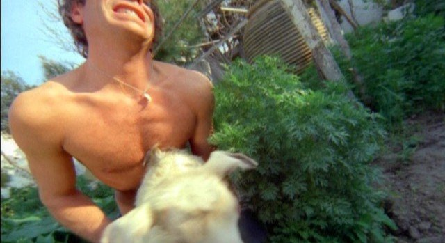 Island of Death 1976 Film Review