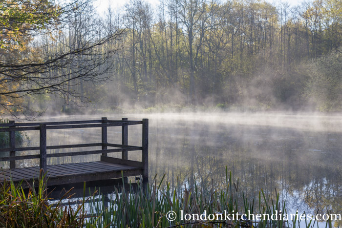 Mist covered lake at Sissinghurst Castle Estate just after dawn