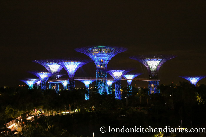 The Supertree Grove at night in Singapore
