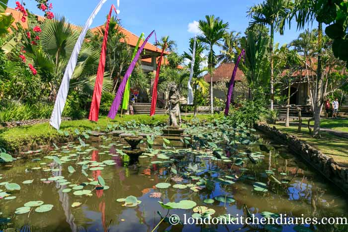 Pond and garden at Museum Puri Lukisan in Ubud, Bali
