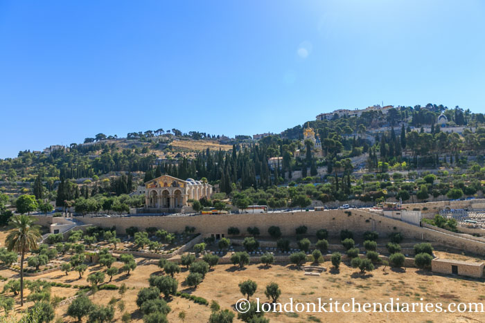Kidron valley Basilica of the agony Jerusalem