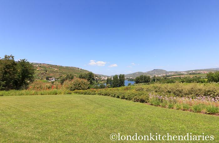 Landscape surrounding Six Senses Douro Valley, Portugal