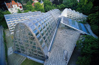 Graz Botanical Garden Greenhouse 2