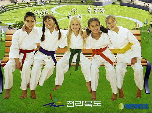 Taekwondo or Karate?