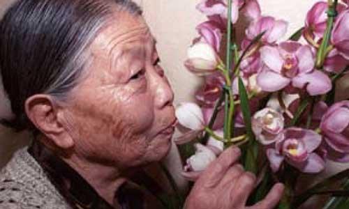 Grandma Gil