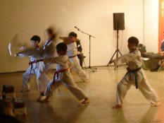 The Taekwondo team (photo: Saharial)