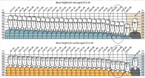 OECD height chart