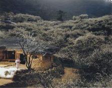 Jung Yeondoo: Location #9, 2006