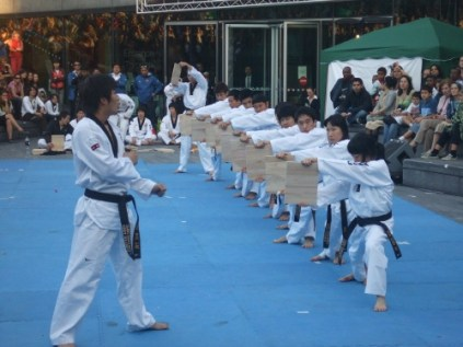 Taekwondo demo - the big kick 1