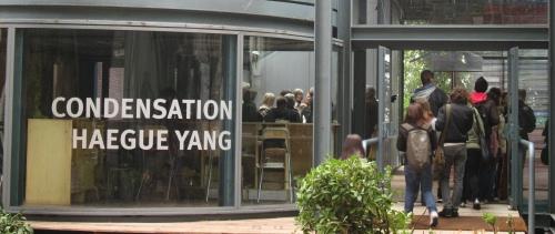 Yang_banner