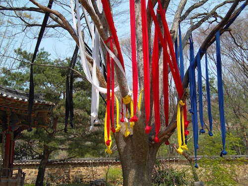 Five colours of streamers hanging from the tree