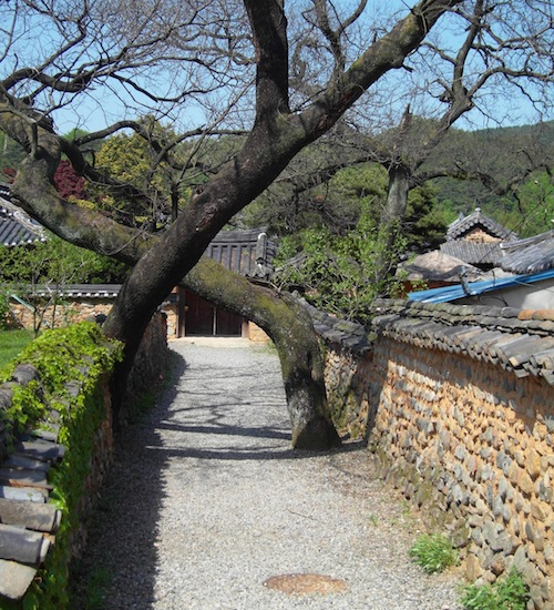 Namsari Walls