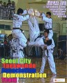 Thumbnail for post: Empowering the Taekwondo Generation: TKD demos in London and southern England
