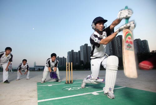 Sungkyunkwan University Dragons cricket team