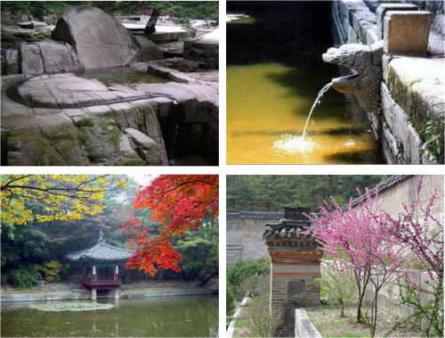 Featured image for post: The Changdeokgung's Secret Garden – A Part of Nature