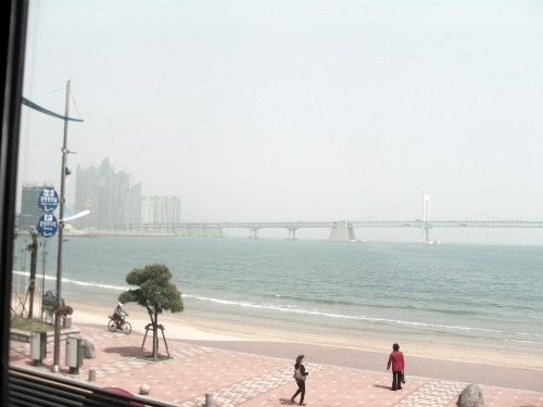 The view of Gwangalli beach from the restaurant