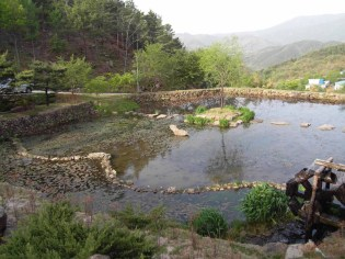 The pond at Suseonsa, on the banks of which in the future templestay accommodation would be built