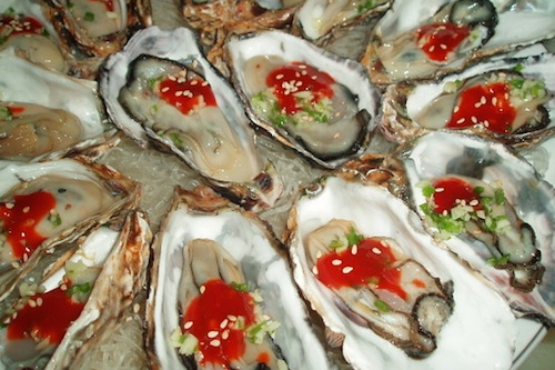 Oysters (굴)