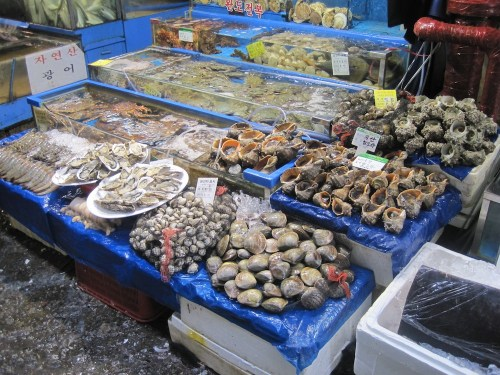Some of the goodies on offer at Noryangjin Fish Market