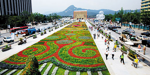 Gwanghwamun flower carpet