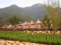 Holdiay accommodation for enjoying the recreational forest and the mountain walks