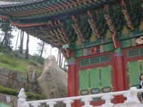 Behind the Donguijeon is the Turtle Rock