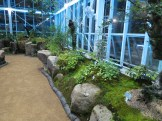 Inside the Medicinal Herb Hall