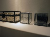 Glass storage boxes from Son Meot