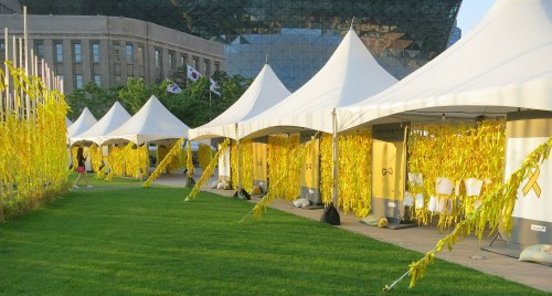 Yellow ribbons in memory of the Sewol victims
