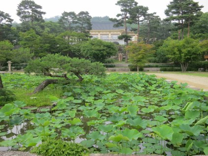The lotus pond in the Hee Won's Main Garden, with the museum behind