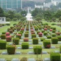 Thumbnail image for 2015 Travel Diary day 5: The UN Memorial Cemetery and the start of the MERS scare