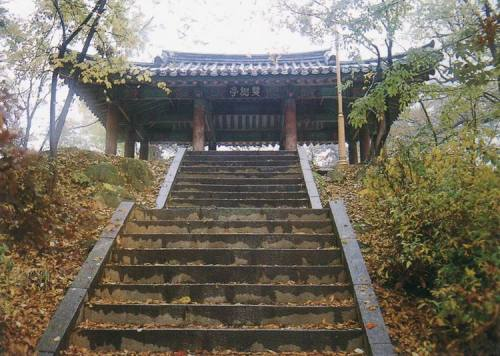The Ssangsujeong Twin Tree Pavilion (photo: Cultural Heritage Administration)