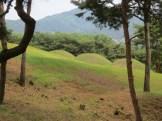 The Royal Tombs in Songsan-ri, Gongju