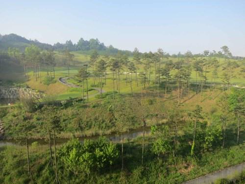 Early morning on Lotte's Baekje golf course