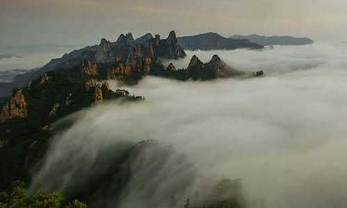 Post image for South Korea: Earth's Hidden Wilderness – BBC2 documentary
