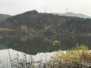 Reflections in Gopung reservoir