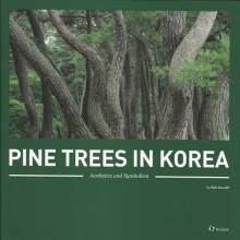 Thumbnail for post: Pine Trees In Korea: Aesthetics and Symbolism