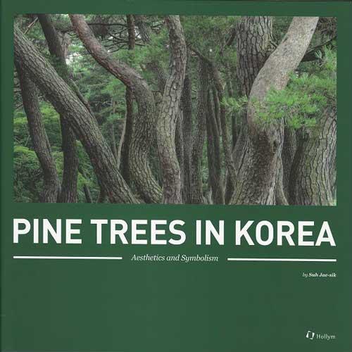 Pine Trees In Korea