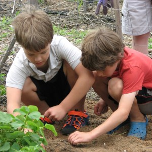 Gardening as a family? Try these ideas to make it a great experience!