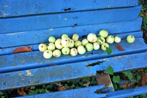 lali-kacharava_apples-from-the-garden-of-my-childhood