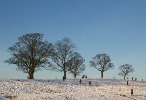Sledgers at Lyme