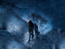 machedelcampo_stars-walking_85
