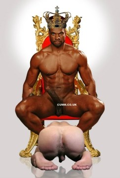king of cock 2