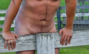 #bear-art-farmer-joe-nude (2)